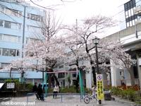佐久間公園  − ラジオ体操会発祥の地