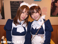 M-fact CAFE(エム・ファクト・カフェ)  − メイド喫茶